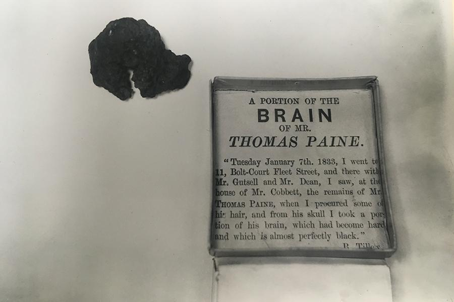 A portion of the brain of Mr. Thomas Paine from the ITPS archives.
