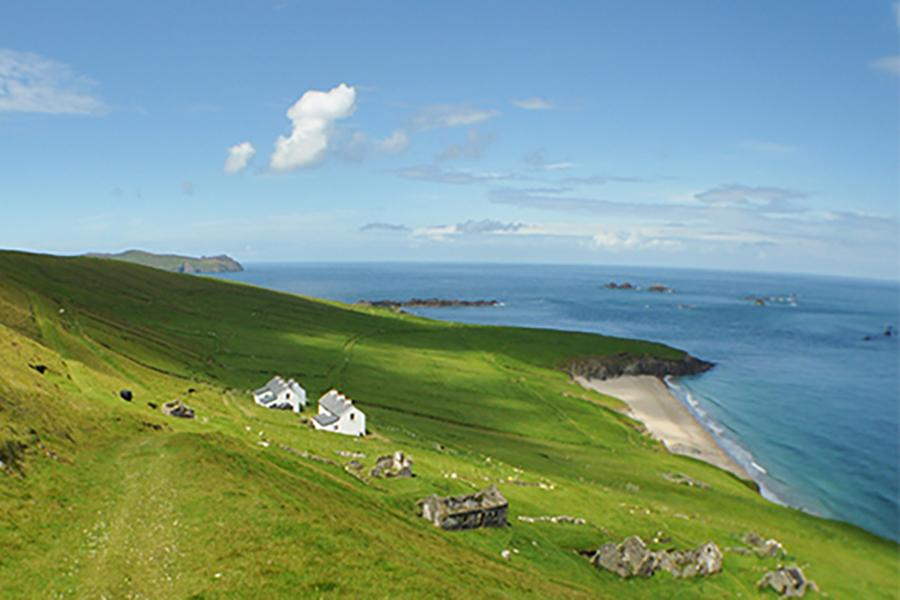 Small white houses dot the coast of Dingle, Ireland.