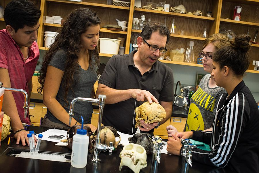 Dr. Stabile shows a group of students a skull in his biology class.