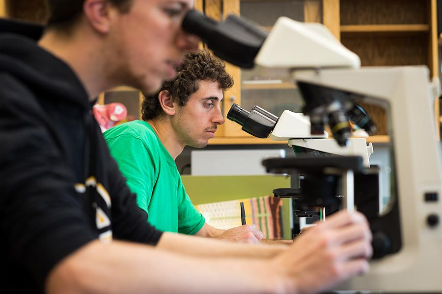 An environmental science student looks into a microscope.